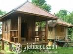 Rumah Panggung Glugu kombinasi Ukiran Gebyok